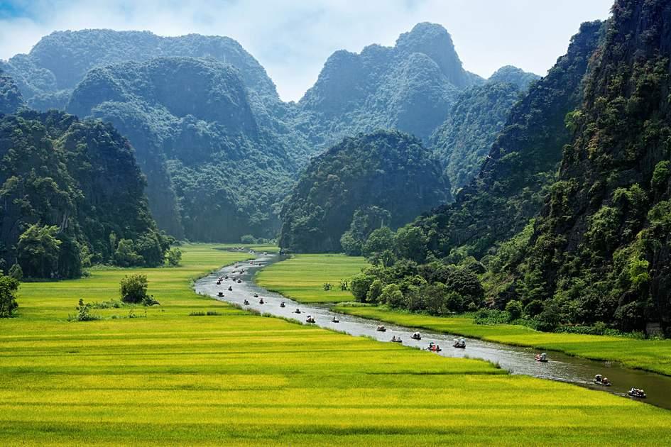 Rice field and river, NinhBinh, Vietnam. Photo: John Bill/Shutterstock