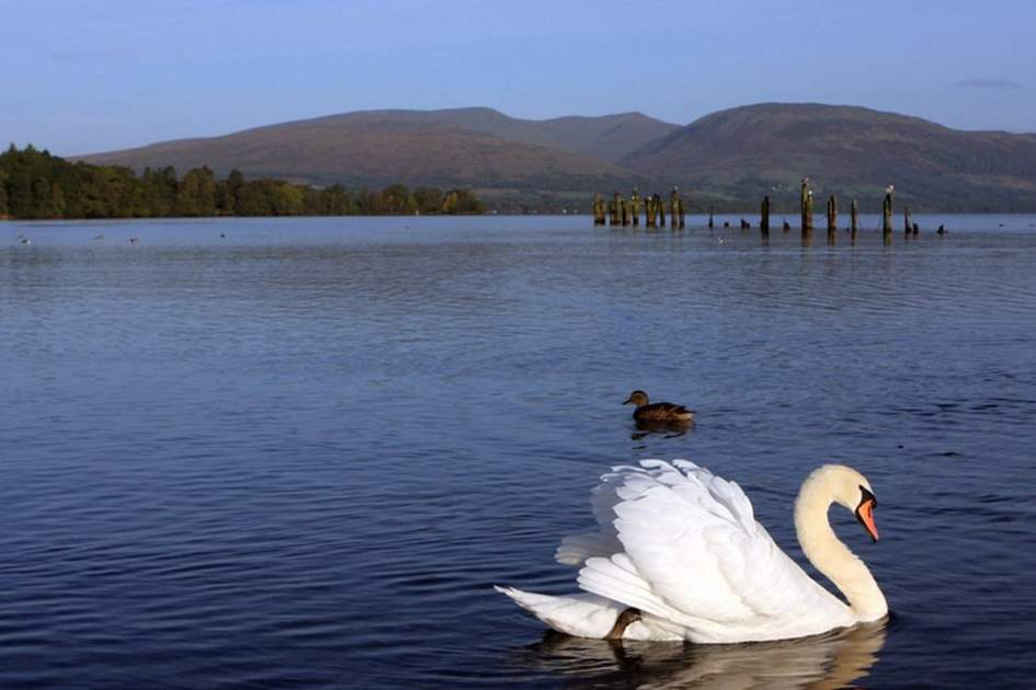 Loch Lomond, (photo by David Cruickshanks)
