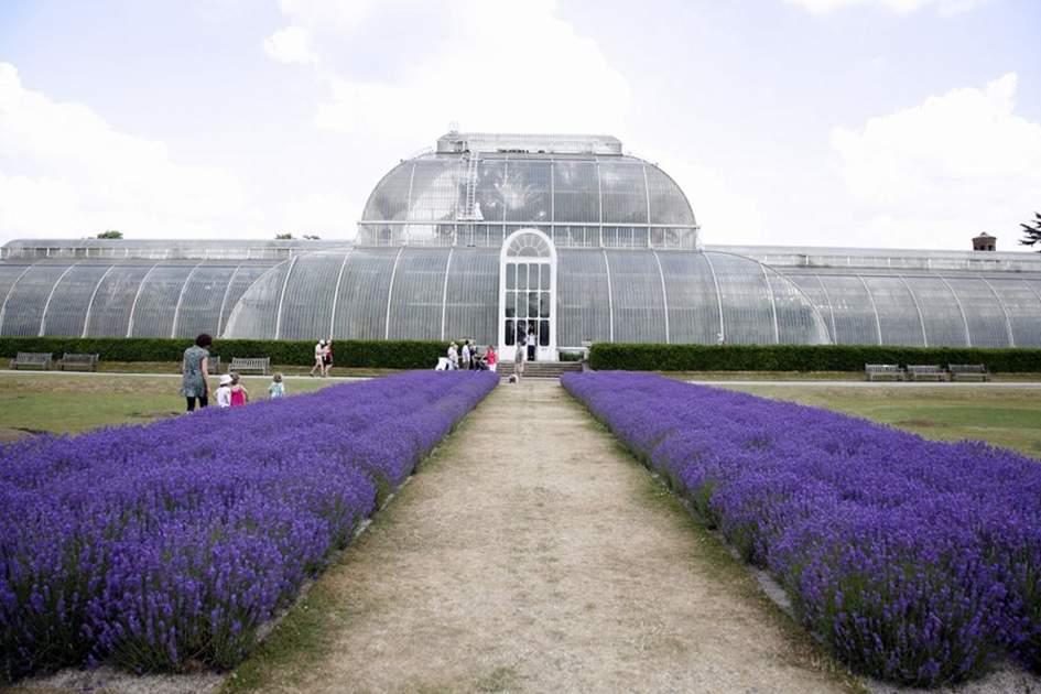 Kew Gardens, (photo by MT Evans)