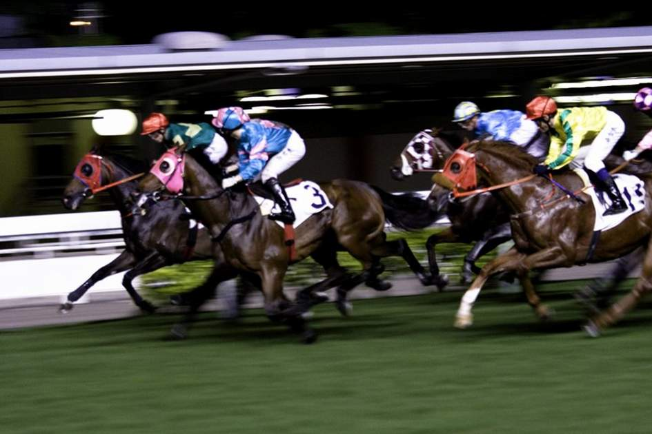 Horse Racing in Hong Kong, (photo by Alex Havret)