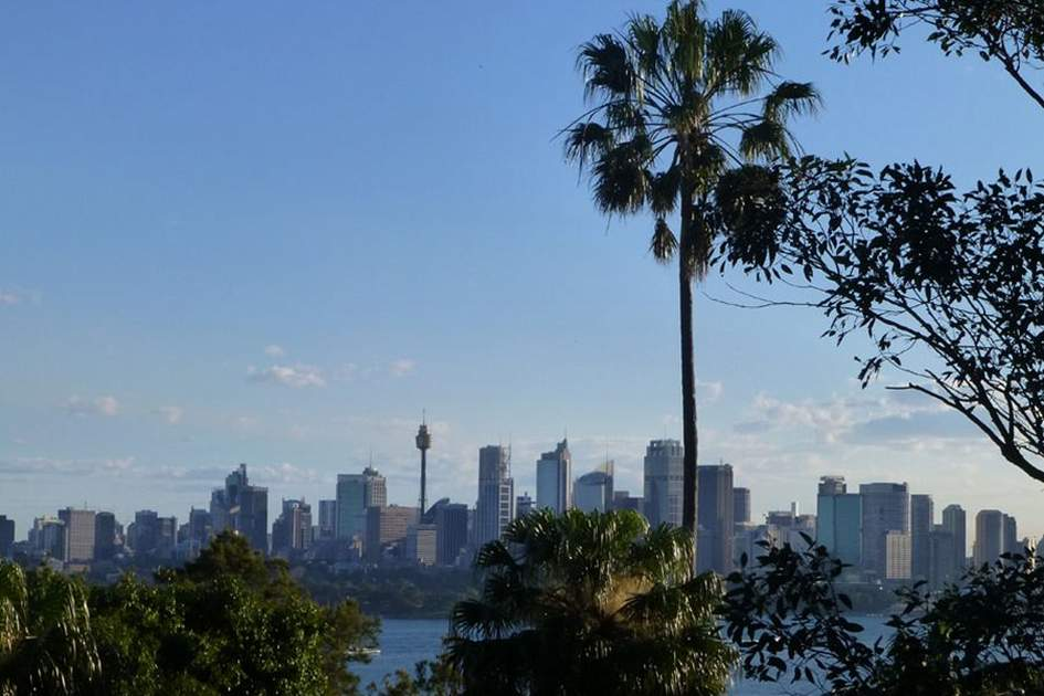 View of Sydney from Taronga Zoo, (photo by Becky Lovell)