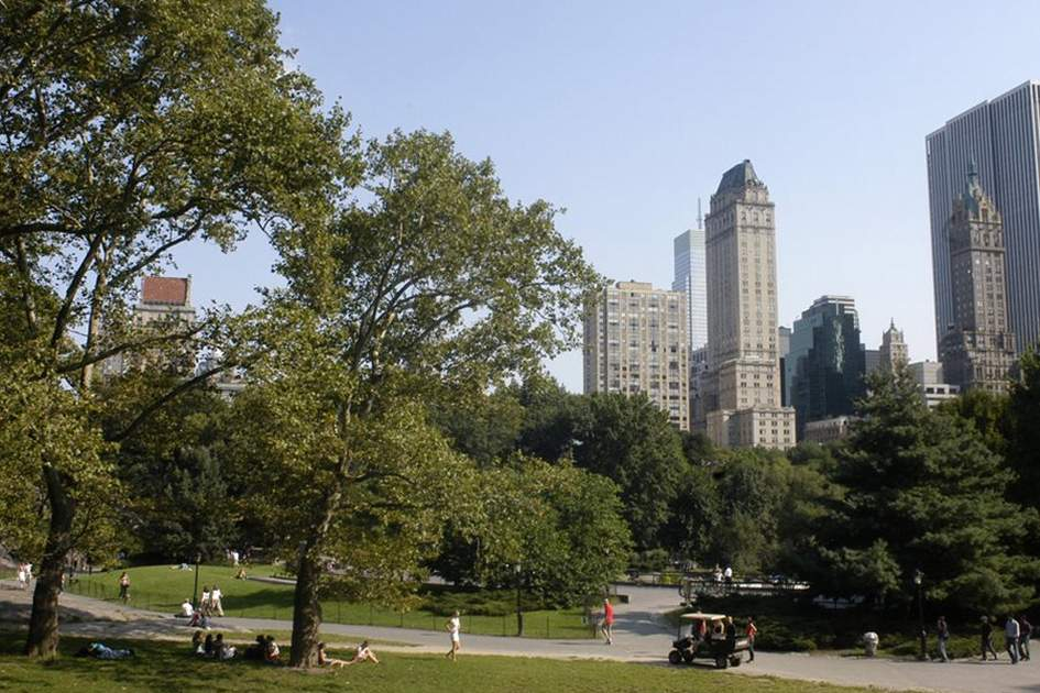 New York skyscrapers as seen from Central Park                                , (photo by A Nowitz)
